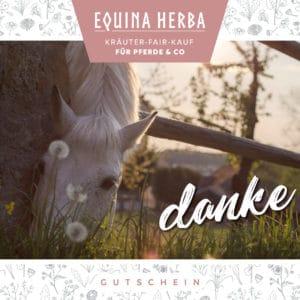 Equina Herba Gutscheine